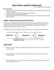 Worksheet1-CardiacCycle