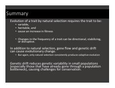 L3_Natural Selection Summary.pdf
