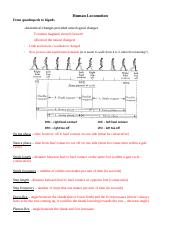 locomotion_NOTES (1).docx