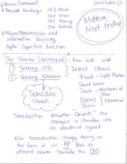 The Senses and Neurotransmission Notes