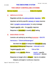 Endocrine System long note