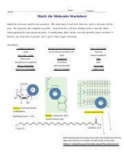 Match the Molecules Worksheet.docx