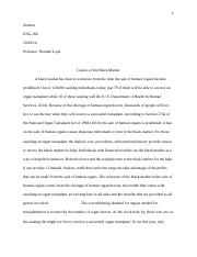 example_cause_and_effect_argument_essay.docx
