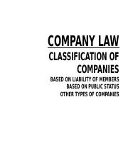 113170_Chapter 3.2 - Classification of Companies (1).pptx