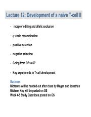 Lecture 12 Naive T cell develop 2.pdf