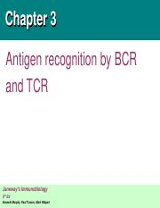 chapter 3. Antigen recognition by BCR and TCR