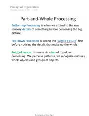 Perceptual Organization.pdf