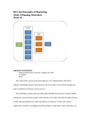 Environmental Analysis Worksheet In-Class Example (2)