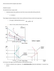 MICROECONOMICS EC201 COMPLETE NOTES Topic 3