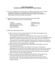 Antibiotic action activity review sheet - key.docx