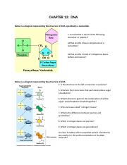 Unit-6-Cell-Reproduction-Chp-12-DNA-Module.docx