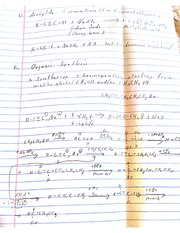 Organic Chemistry Completed Notes2