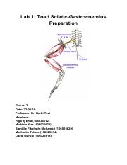 Physiology lab report 1.pdf