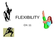 Chapter_11_-_Flexibility