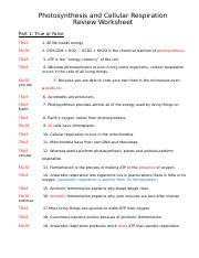Photosynthesis and Cellular Respiration Review KEY.docx