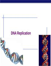 DNA Repli &Mut