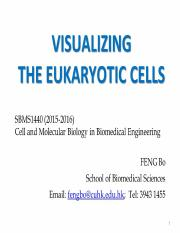 Lecture1_2016-SBMS1440_Visualizing the eukaryotic cells_final.pdf