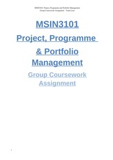 MSIN3101-proj mgmt group assignment