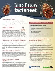 bed_bugs_fact_sheet.pdf
