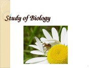 1.introduction to biology