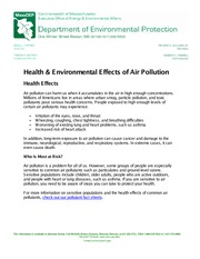health-and-env-effects-air-pollutions