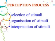 PERCEPTION PROCESS  (Presentation)