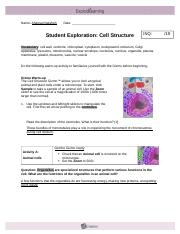 Student Exploration- Cell Structure (ANSWER KEY).docx ...