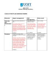 Case action plan rubric 2015.docx