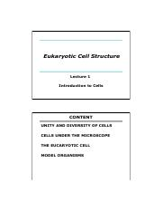 HPNasheuer_3rd yr lecture 01 The Cell_2016red.pdf