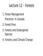 Lecture 12 - Forests - A2L