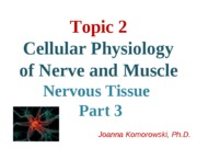 3 - ANP 1105 Nervous system part 3 JK2