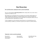rat dissection discussion