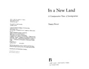 Foner - In a New Land