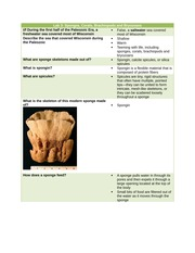 Geosci - Lab Three Notes (Sponges and Corals)