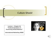Chapter 4 Lecture - Culture Shock