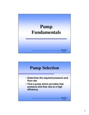 BRAE 236 Pump Fundamentals