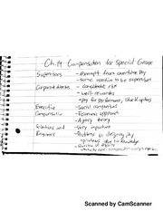 Chapter 14- Compensation for special groups