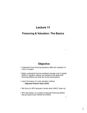 Lecture 11 - Financing and Valuation - The Basics