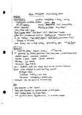 Kabuki and Noh Theatre Notes