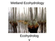 Ecohydrology_Lecture7_F11