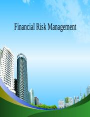 Financial_Risk_Management_ppt_at_mba_fin.ppt