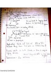 Replication Notes