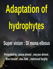 Adaptation of hydrophytes.ppt