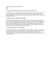Justice system position paper