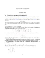 Matrix-mult-perspectives.pdf