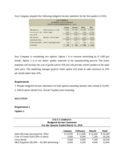 Ivey Company Budget income Statement