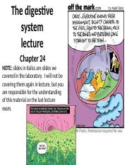 Chapter 24 The digestive system.ppt