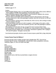 updated051408Midterm2CommonNZsandstudyguide
