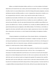 photosynthesis cabbage lab report photosynthesis in spinach vs  3 pages molluscs essay