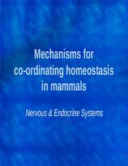 Mechanisms for coordinating homeostasis in mammals